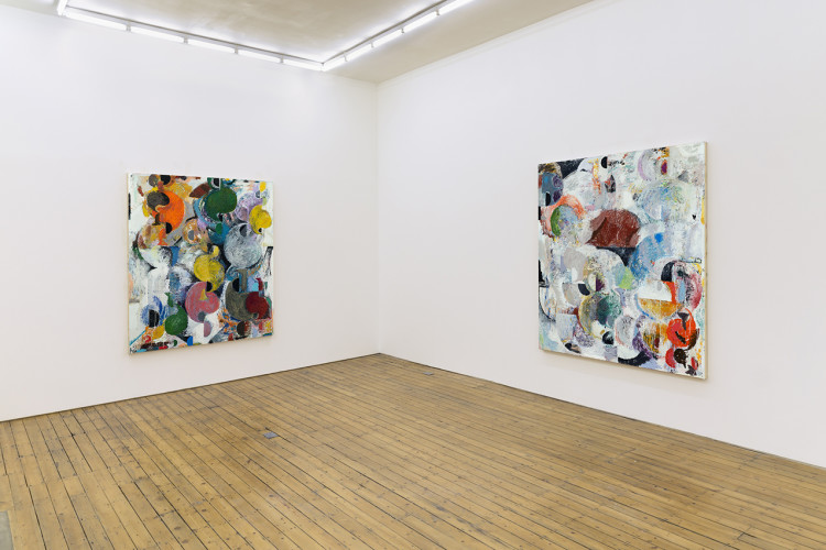 Tonic for Choice, Installation view at The Approach, 2014